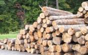 Importacion de madera